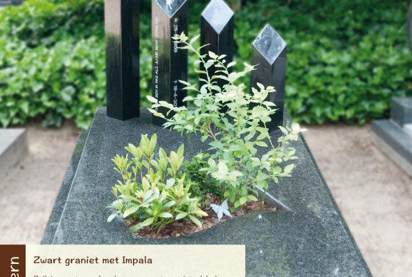 Modern – zwart graniet met impala